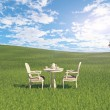 Table on the meadow — Stock Photo