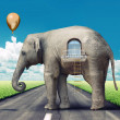 Elephant-house on the road — Stock Photo