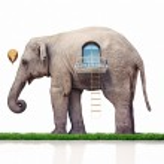 Elephant as a house — Stock Photo #31035551