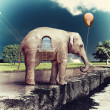 Stock Photo: Elephant -house on the road