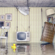 life in the flooded flat — Stock Photo #47819433
