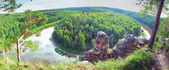 Siberian taiga landscape — Stock Photo