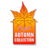 New autumn collection label with leaf — Stock Photo