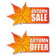 Foto Stock: Autumn sale and offer labels with leaf