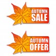 Stock Photo: Autumn sale and offer labels with leaf