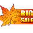 Big sale autumn label with leaf — Stock Photo