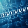 Blue leadership in glass blocks - Stock Photo