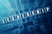 Blauwe leiderschap in glazen blokken — Stockfoto