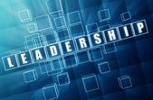 Blue leadership in glass blocks — Stock Photo