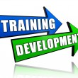 Stock Photo: Training development in arrows