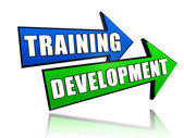 Training development in arrows — Stock Photo