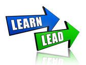 Learn lead in arrows — Stock Photo