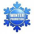 Winter promotion snowflake label - Stockfoto