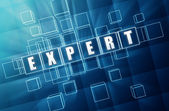 Expert - concept image — Stock Photo