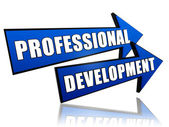 Professional development in arrows — Foto Stock
