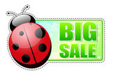 Big sale green label with ladybird — Stock Photo