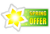 Spring offer green label with flowers — Stock Photo