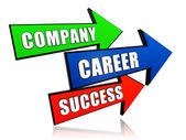 Company, career, success in arrows — Stock Photo
