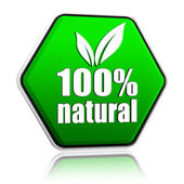 100 percentages natural with leaf sign in green button — Stock Photo