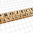 Project management in golden cubes — Stock Photo