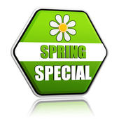Spring special green hexagon label with flower — Stock Photo