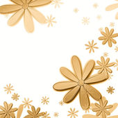 Beige flowers over white background — Stock Photo