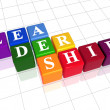 Leadership in colour - Stock Photo