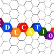 Stock Photo: Education in color hexagons in cellular structure