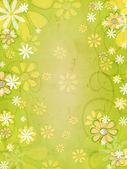 Primavera de flores blancas y amarillas sobre fondo verde vintage — Foto de Stock