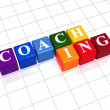 Coaching in color cubes — Stock Photo