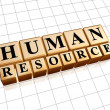 Human resources in golden cubes — Stockfoto