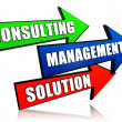 Consulting, management, solution in arrows - Foto de Stock