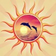 Sun and dolphins — Stock Photo