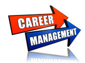 Career management in arrows — Stock Photo