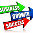 Business, growth and success in arrows — Stock Photo
