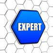 Expert in blue hexagon — Foto Stock
