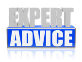 Expert advise in blue white banner - letters and block — Foto Stock