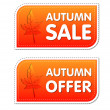Autumn sale and offer labels with fall leaf — Stock Photo