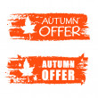 Autumn offer drawn banner with fall leaf — Stock Photo