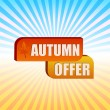 Stock Photo: Autumn offer and fall leaf over rays