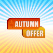 Autumn offer and fall leaf over rays — Stock Photo