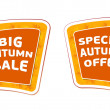 Stock Photo: Big sale and special offer autumn banners