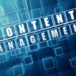 Content management in blue glass cubes - internet concept — Stock Photo #33527175