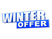 Winter offer in 3d blue letters and block — Stok fotoğraf