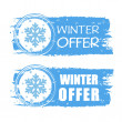 Winter offer with snowflake on blue drawn banners — Stock Photo