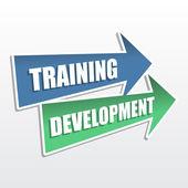 Training development in arrows, flat design — Stock Photo