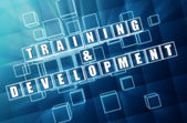Training and development in blue glass cubes — Stock Photo