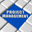 Stock Photo: Project management in boxes