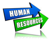 Human resources in arrows — Stock Photo