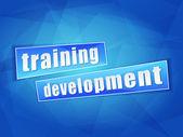 Training development, flat design — Stock Photo
